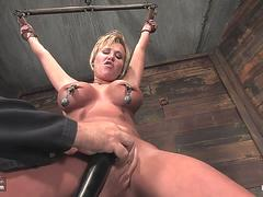 Carly suspended in bondage extreme whipping